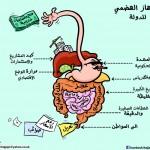 كاريكاتير ايامه حجاج - الجهاز الهضمي للدولة