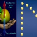 مسار الكرة حسب قوانين نيوتن